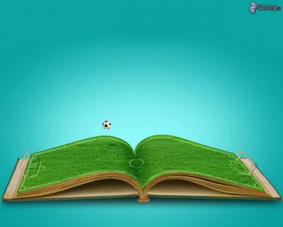 Campo de Fútbol en libro