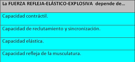 Curva Fuerza Reflejo Elástico Explosiva