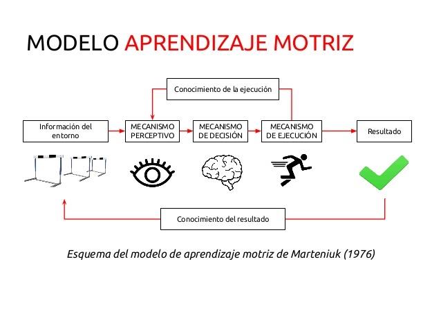 Marteniuk Mecanismos PDE 1976